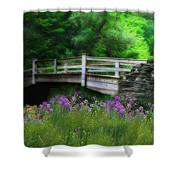 Country Bridge Shower Curtain by Lori Deiter