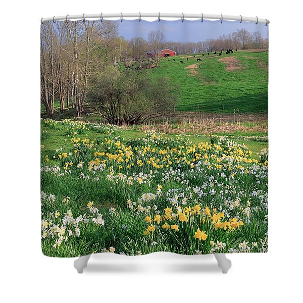 Country Spring Shower Curtain by Bill  Wakeley