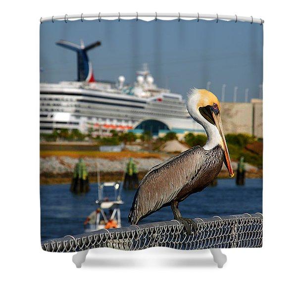 Cruising Pelican Shower Curtain by Susanne Van Hulst