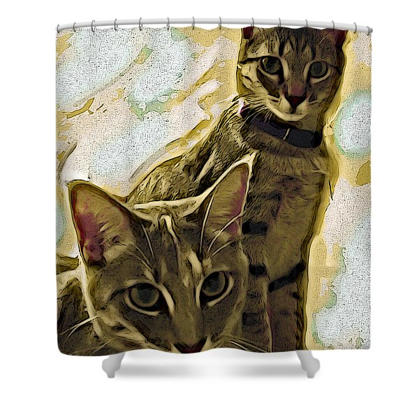 Curious Cats Shower Curtain by David G Paul