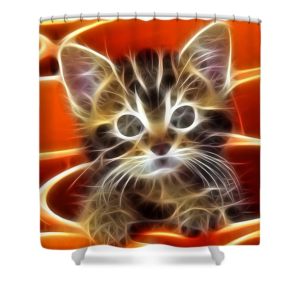 Curious Kitten Shower Curtain by Pamela Johnson
