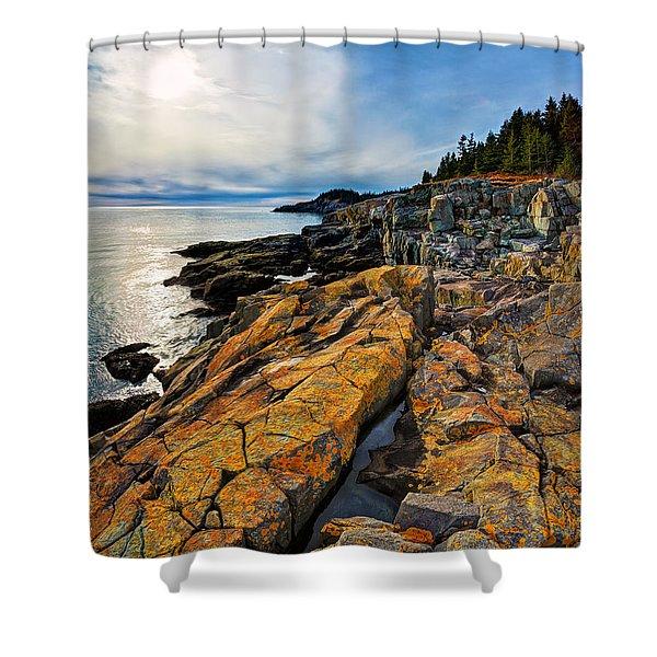 Cutler Coast Lichen Shower Curtain by Bill Caldwell -        ABeautifulSky Photography
