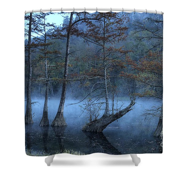 Cypress Awakening Shower Curtain by Tamyra Ayles