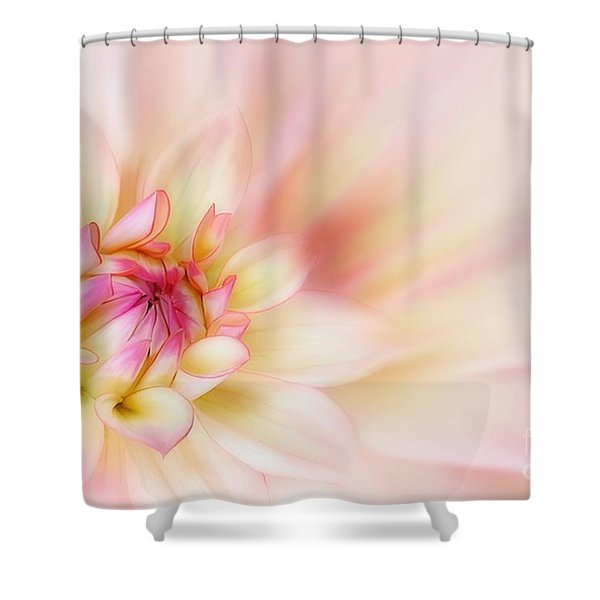 Dahlia Shower Curtain by John Edwards