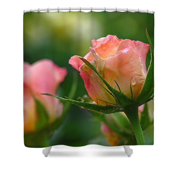 Dance Your Bud Off Shower Curtain by Juergen Roth