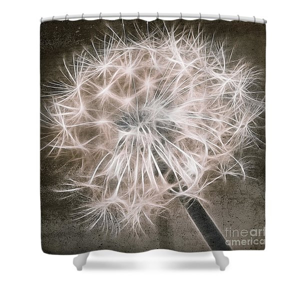 Dandelion in Brown Shower Curtain by Aimelle