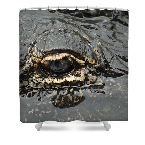 Dangerous Stalker Shower Curtain by Carolyn Marshall