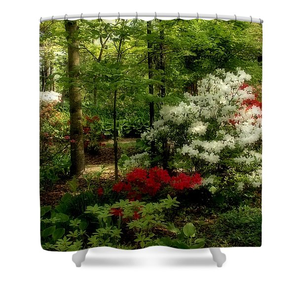 Dreaming Of Spring Shower Curtain by Sandy Keeton