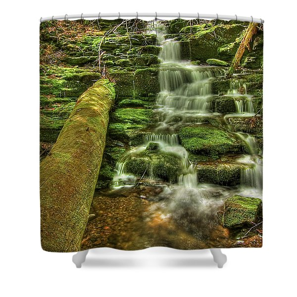 Emerald Dreams Shower Curtain by Evelina Kremsdorf
