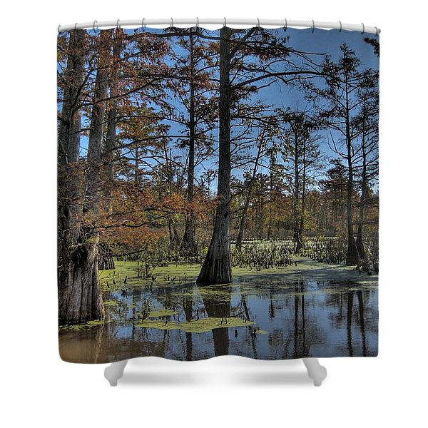 Enchanted Forest Shower Curtain by Jane Linders