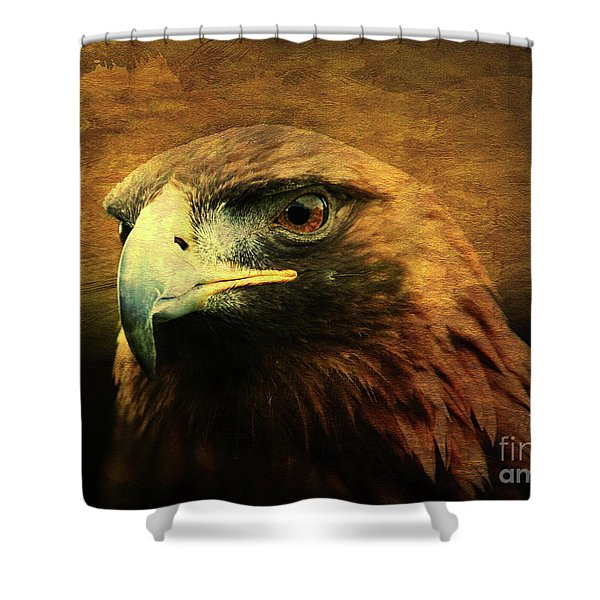 Eyes Of The Golden Hawk Shower Curtain by Wingsdomain Art and Photography