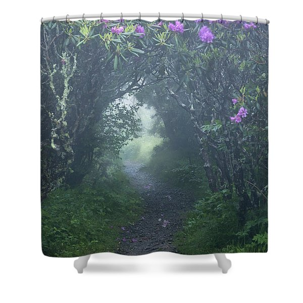 Fairy Path Shower Curtain by Rob Travis