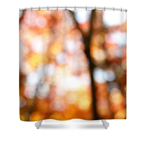 Fall colors Shower Curtain by Les Cunliffe