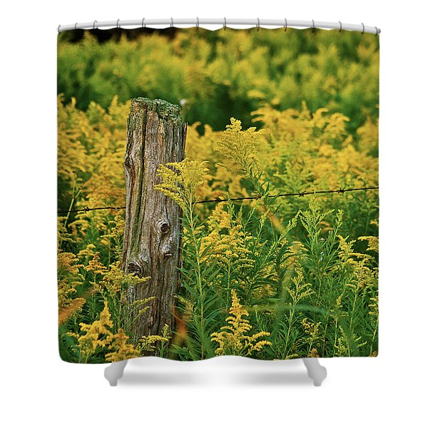 fence post7139 Shower Curtain by Michael Peychich