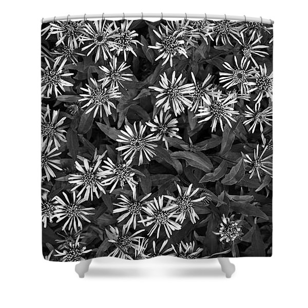 flower carpet Shower Curtain by Priska Wettstein