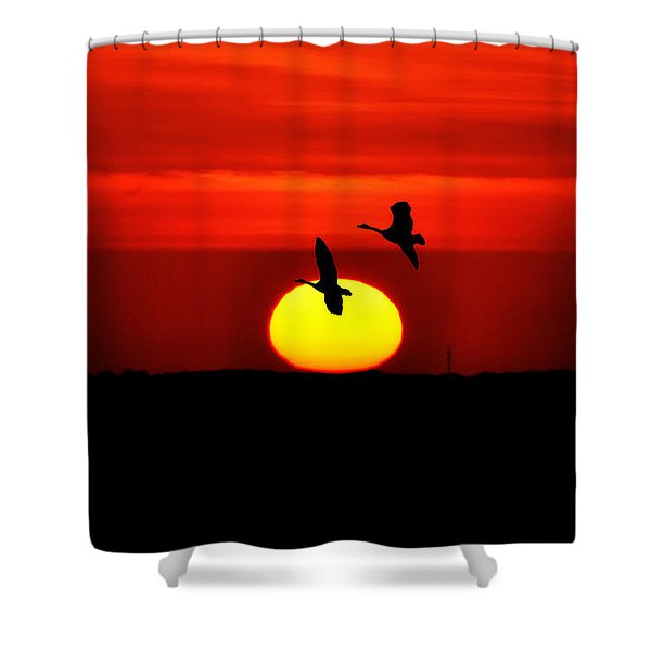 Flying North at Sunrise Shower Curtain by Bill Cannon