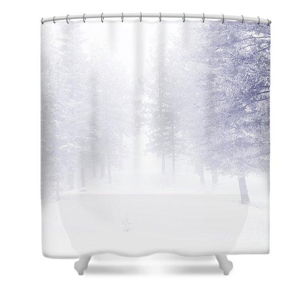 Fog And Snow Shower Curtain by Tara Turner