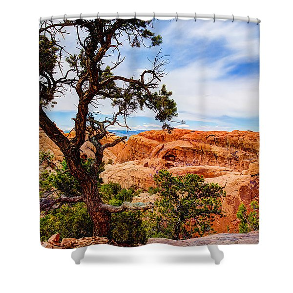 Framed Arch Shower Curtain by Chad Dutson