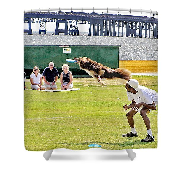 Frisbee Dog Shower Curtain by Brian Wallace