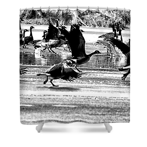 Geese On Ice Taking Flight Shower Curtain by Bill Cannon