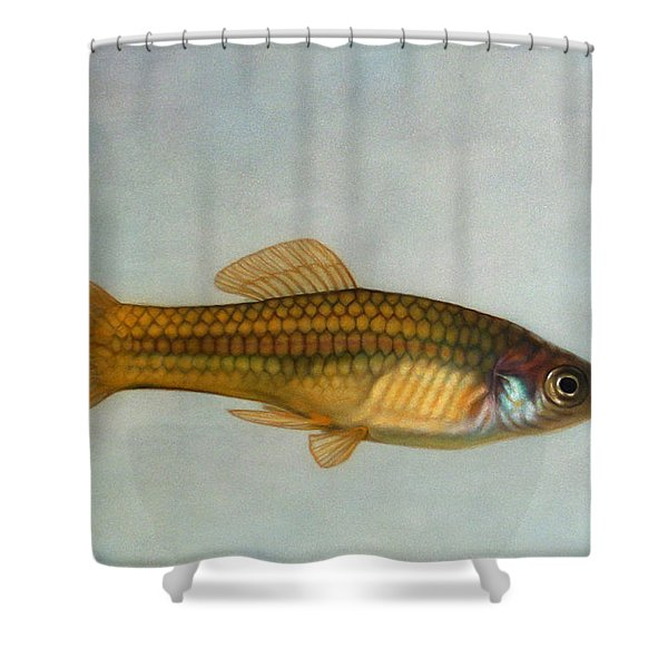Go Fish Shower Curtain by James W Johnson