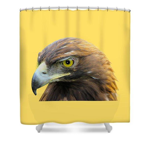 Golden Eagle Shower Curtain by Shane Bechler
