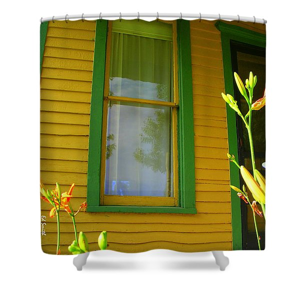 Green Window Shower Curtain by Ed Smith