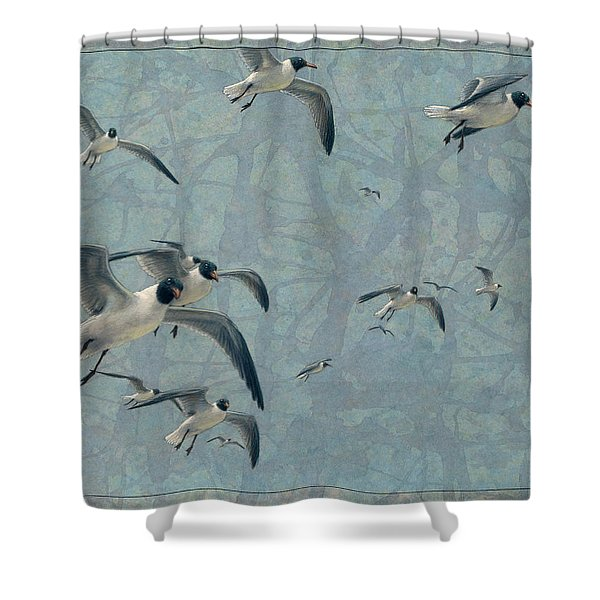 Gulls Shower Curtain by James W Johnson