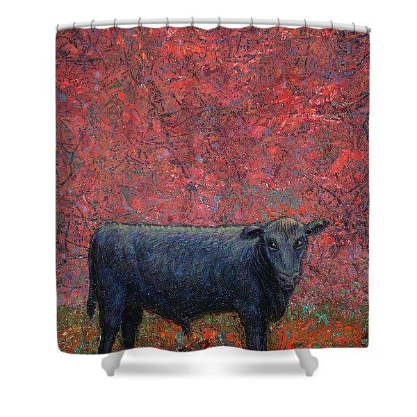 Hamburger Sky Shower Curtain by James W Johnson