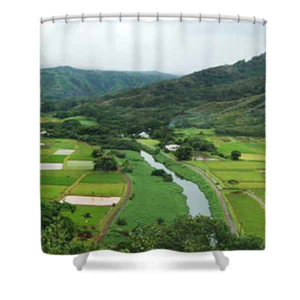 Hanalei Taro Fields Shower Curtain by Michael Peychich