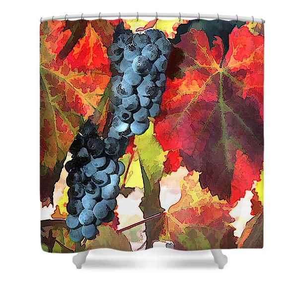 Harvest Time Grapes and Leaves Shower Curtain by Elaine Plesser