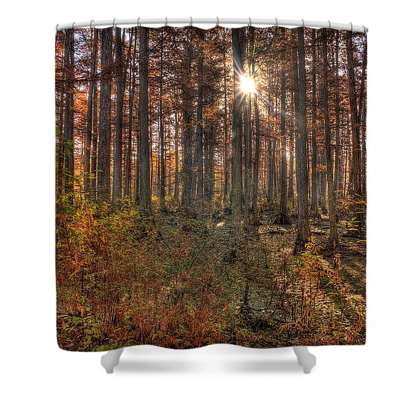 Heron Pond Cypress Trees Shower Curtain by Steve Gadomski