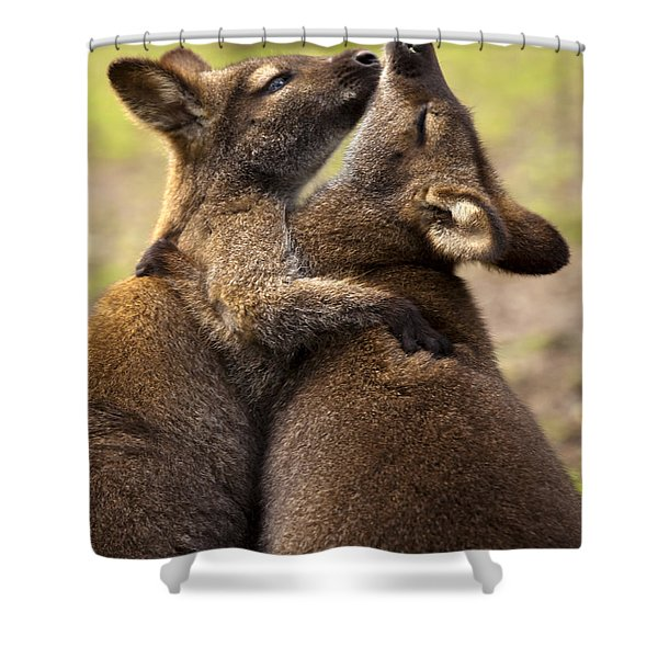 Hugs Shower Curtain by Mike  Dawson