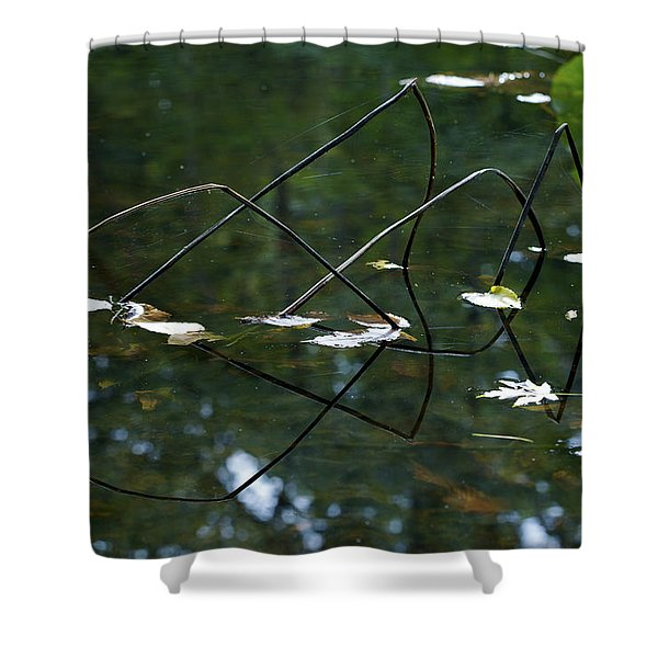 Illusion Shower Curtain by Jane Eleanor Nicholas