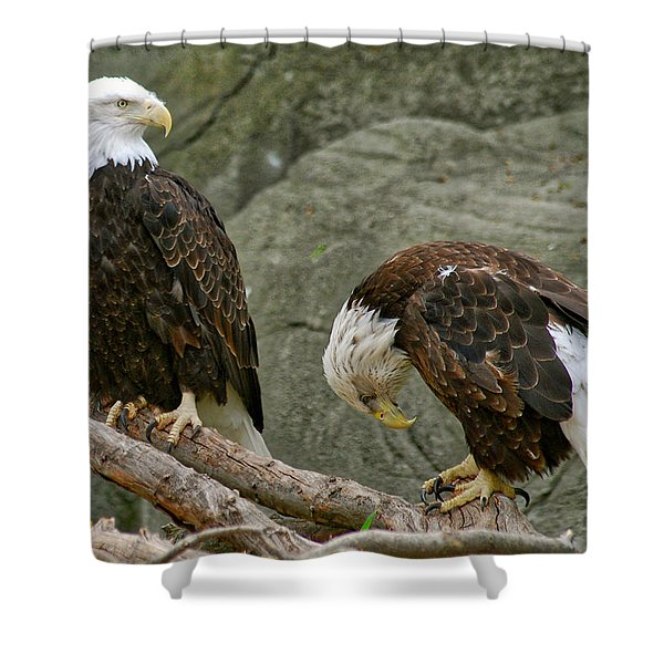 I'm Sorry Shower Curtain by Michael Peychich