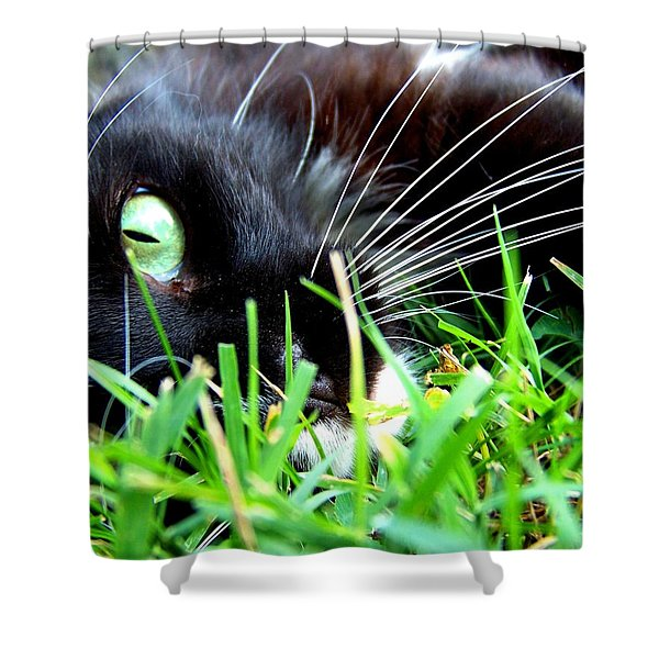 In The Grass Shower Curtain by Jai Johnson
