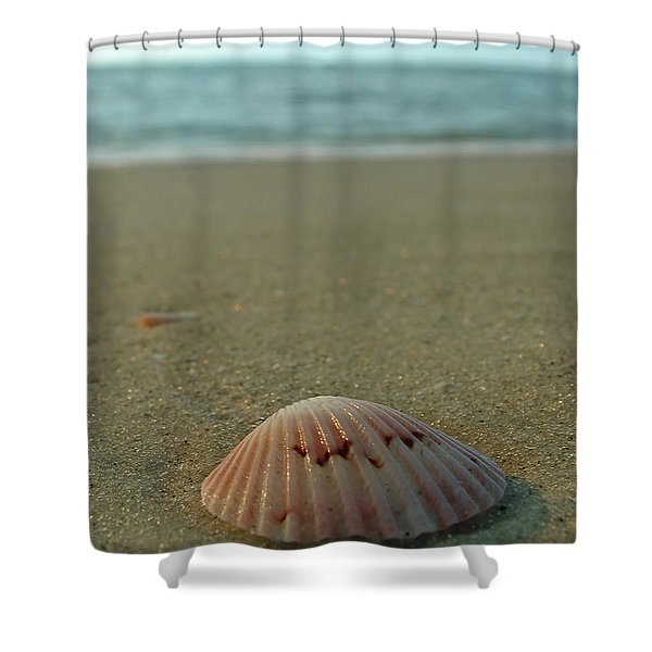 Iridescent Seashell Shower Curtain by Juergen Roth