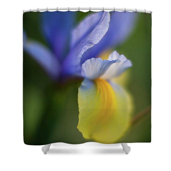 Iris Grace Shower Curtain by Mike Reid
