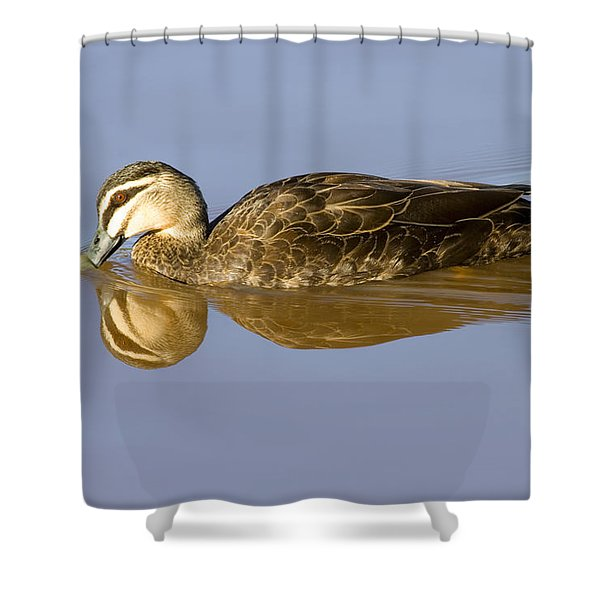 Just A Sip Shower Curtain by Mike  Dawson