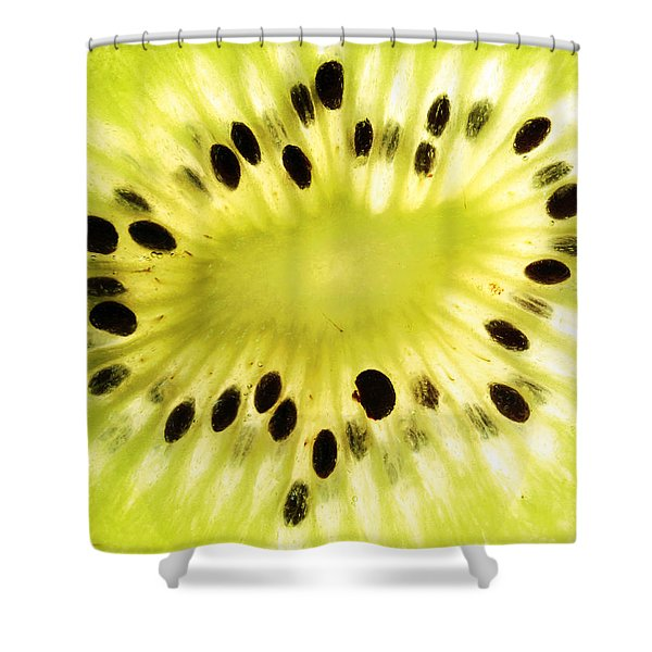 KIWI Fruit Shower Curtain by Paul Ge