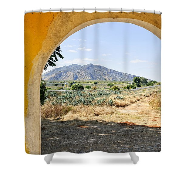 Landscape with agave cactus field in Mexico Shower Curtain by Elena Elisseeva