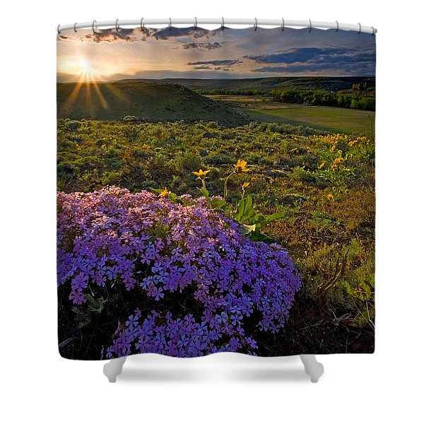 Last Light Of Spring Shower Curtain by Mike  Dawson