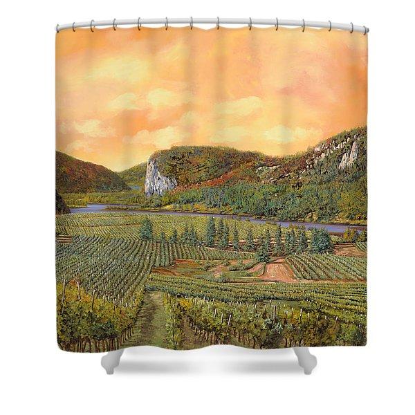 le vigne nel 2010 Shower Curtain by Guido Borelli
