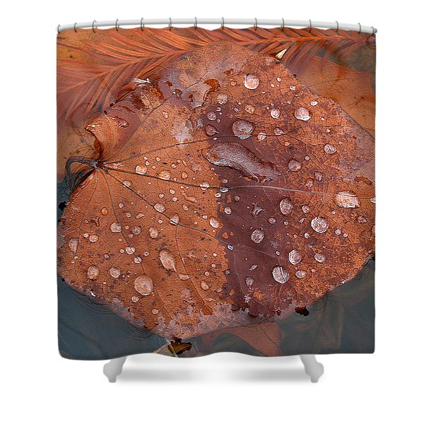 Leaf Blues Shower Curtain by Juergen Roth