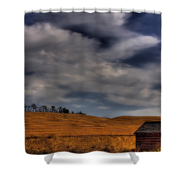 Leaving the Shed Shower Curtain by David Patterson