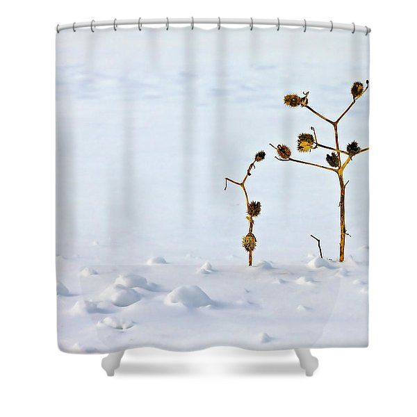 Let's Stick Together Shower Curtain by Evelina Kremsdorf