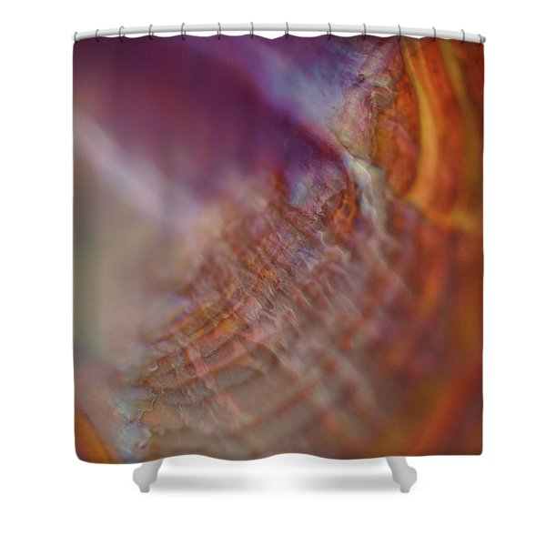 Life At Sea Shower Curtain by Rona Black