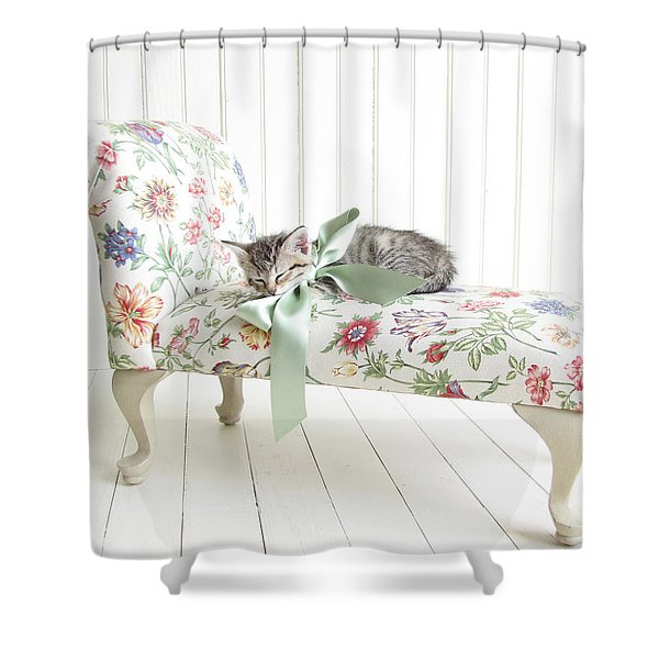 Little Princess Shower Curtain by Amy Tyler