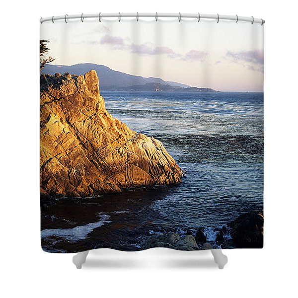 Lone Cypress Tree Shower Curtain by Michael Howell - Printscapes