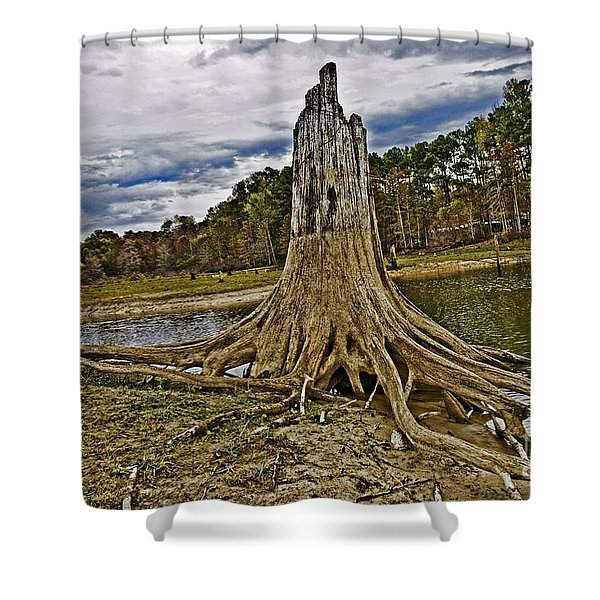 Low Water Shower Curtain by Scott Pellegrin
